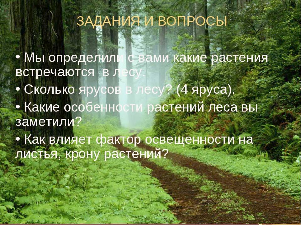 ЗАДАНИЯ И ВОПРОСЫ Мы определили с вами какие растения встречаются в лесу. Ско...