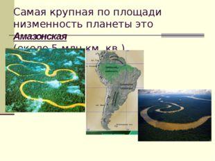 Самая крупная по площади низменность планеты это Амазонская (около 5 млн.км.