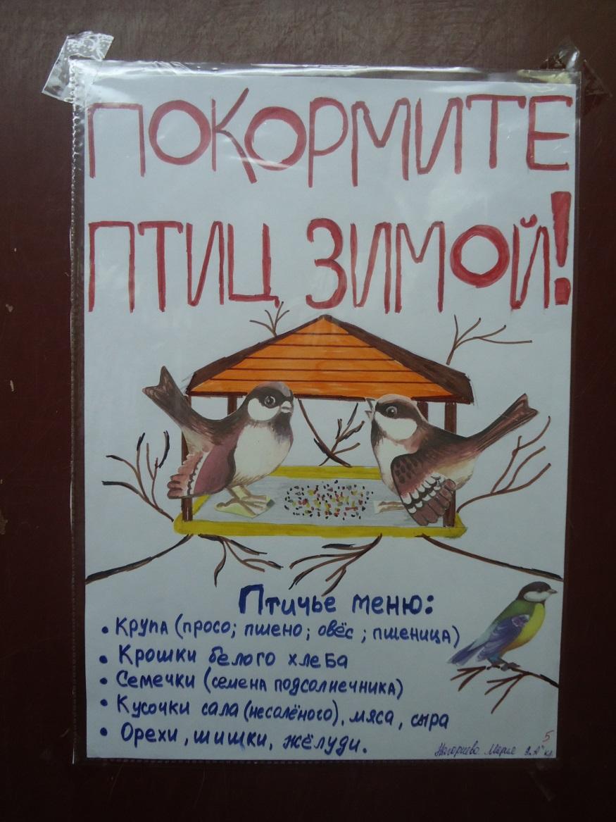 F:\Акция покормите птиц\фотки птичек\DSC01954.JPG