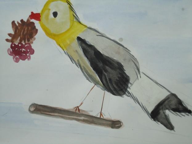 F:\для птичек\DSC02019.JPG