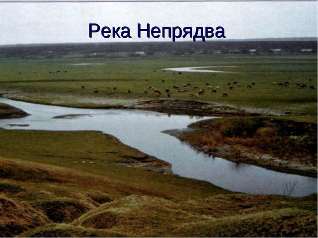 Река Непрядва