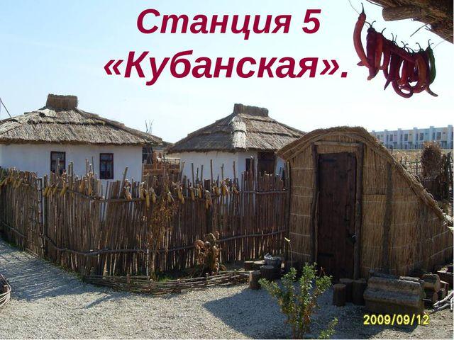 Станция 5 «Кубанская».