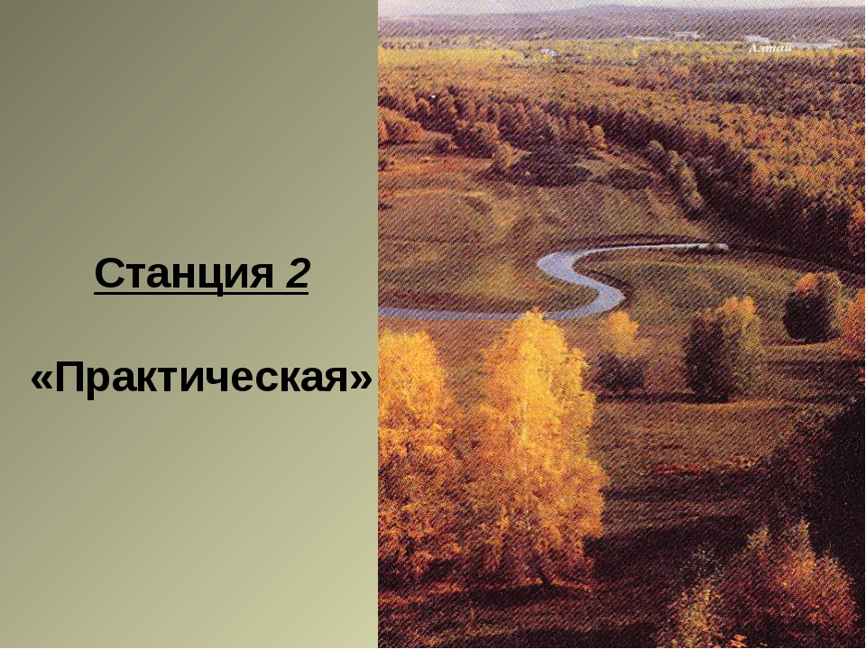 Станция 2 «Практическая»