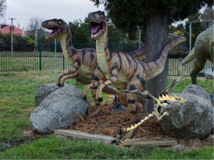 4. Национальный музей динозавров в Канберре, Австралия Тут можно узнатьо дои