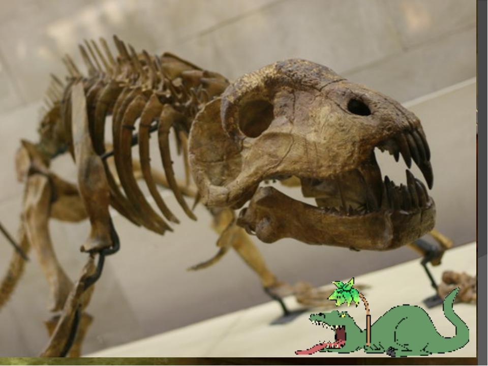 Музей динозавров Музей динозавровв Москве – один из крупнейших естественно –...