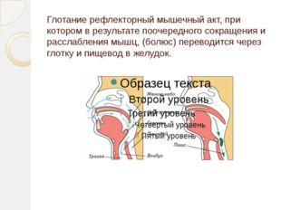 Глотание рефлекторный мышечный акт, при котором в результате поочередного сок