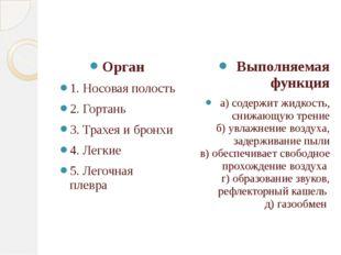 Орган 1. Носовая полость 2. Гортань 3. Трахея и бронхи 4. Легкие 5. Легочная