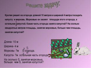 Кролик решил на огороде длиной 10 метров и шириной 4 метра посадить капусту и