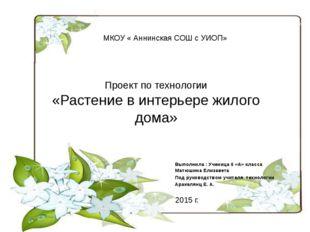 Проект по технологии «Растение в интерьере жилого дома» Выполнила : Ученица 6