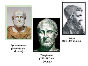 Аристотель (384–322 гг. до н.э.) ГАЛЕН (129—199 гг. н.э.) Теофраст (372–287 г