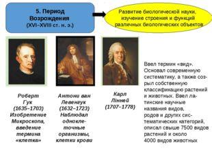 5. Период Возрождения (ХVІ–XVІІІ ст. н. э.) Развитие биологической науки, изу
