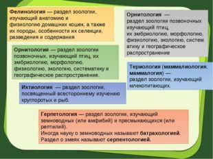 Фелинология— разделзоологии, изучающий анатомию и физиологиюдомашних кошек