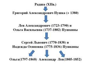 Радша (ХІІв.) Григорий Александрович Пушка (+ 1380) Лев Александрович (1723-1