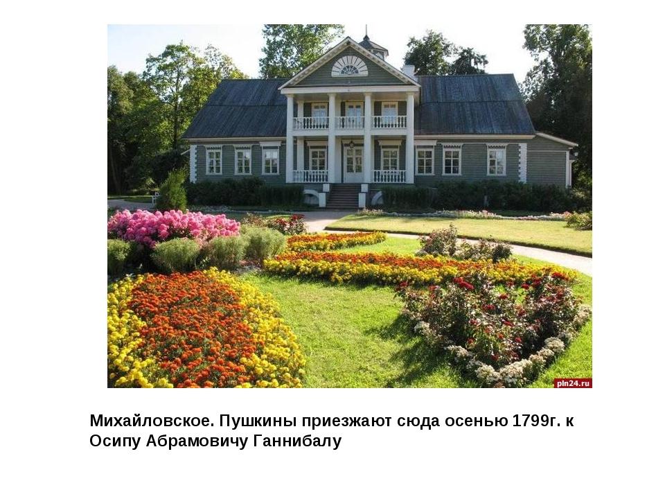 Михайловское. Пушкины приезжают сюда осенью 1799г. к Осипу Абрамовичу Ганнибалу