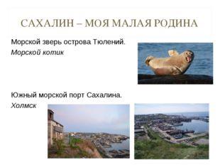 САХАЛИН – МОЯ МАЛАЯ РОДИНА Морской зверь острова Тюлений. Морской котик Южны