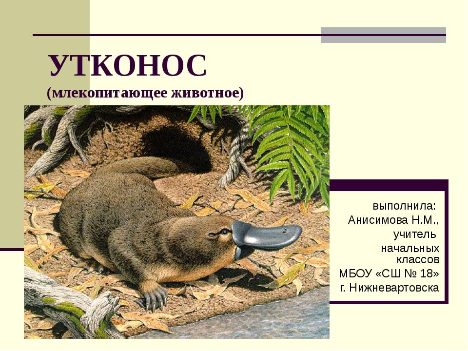 УТКОНОС (млекопитающее животное) выполнила: Анисимова Н.М., учитель начальных...