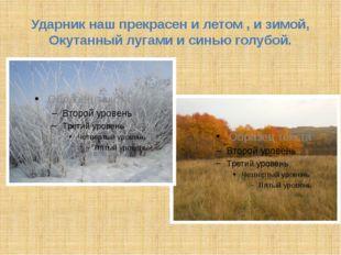 Ударник наш прекрасен и летом , и зимой, Окутанный лугами и синью голубой.