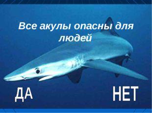 Все акулы опасны для людей