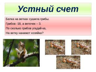 Устный счет Белка на ветках сушила грибы. Грибов -18, а веточек – 3. По сколь