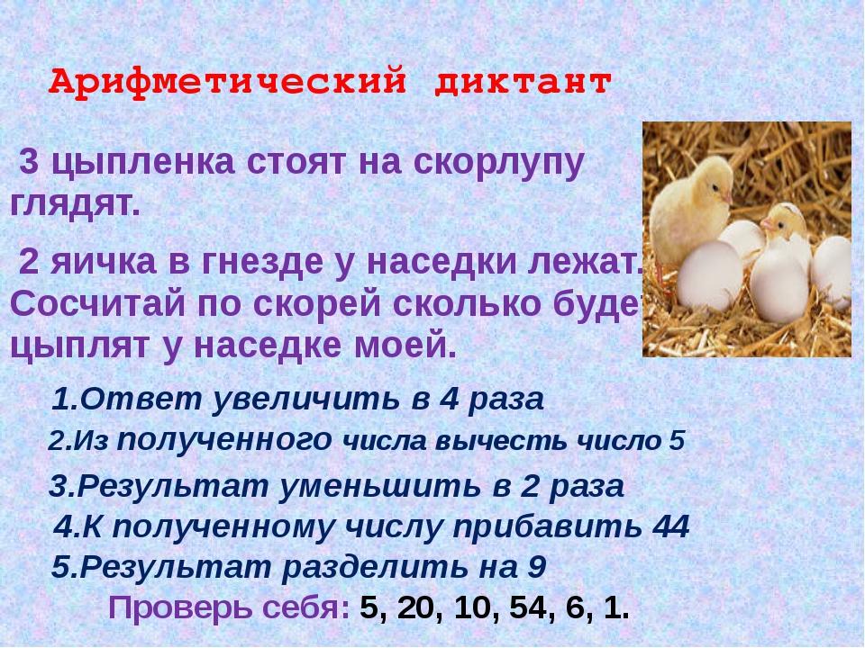 Арифметический диктант 3 цыпленка стоят на скорлупу глядят. 2 яичка в гнезде...