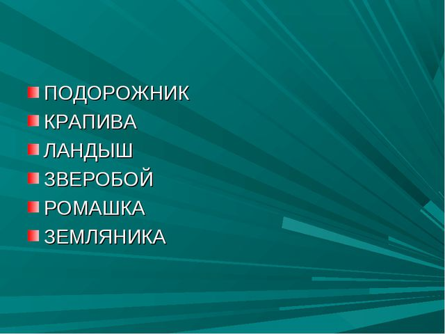 ПОДОРОЖНИК КРАПИВА ЛАНДЫШ ЗВЕРОБОЙ РОМАШКА ЗЕМЛЯНИКА