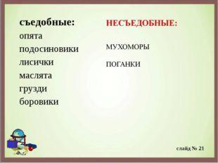 съедобные: опята подосиновики лисички маслята грузди боровики слайд № 21