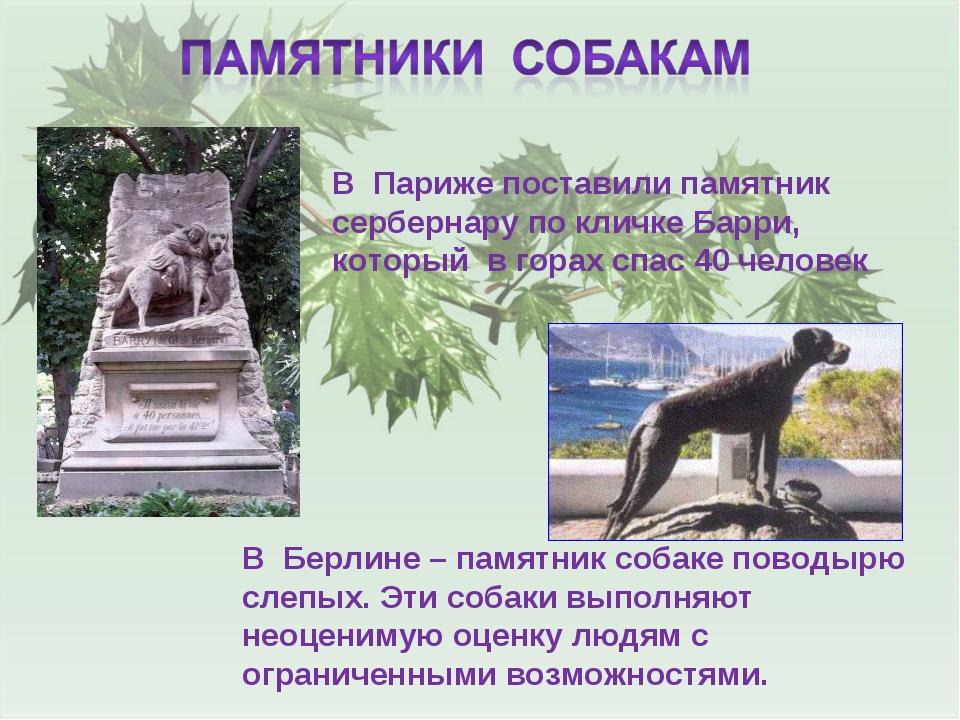 В Париже поставили памятник сербернару по кличке Барри, который в горах спас...