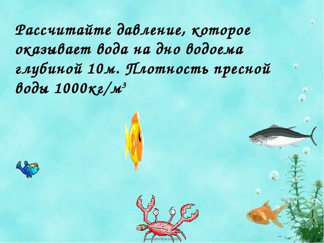 Рассчитайте давление, которое оказывает вода на дно водоема глубиной 10м. Пло...