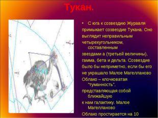Тукан. С юга к созвездию Журавля примыкает созвездие Тукана. Оно выглядит неп