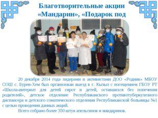 Благотворительные акции «Мандарин», «Подарок под елку» 20 декабря 2014 года