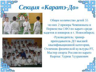 Секция «Каратэ-До» Общее количество детей 55 из них 2 призера Чемпионата и Пе
