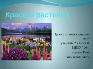 Красота растений Проект по окружающему миру ученицы 2 класса В МБОУГ № 1 горо