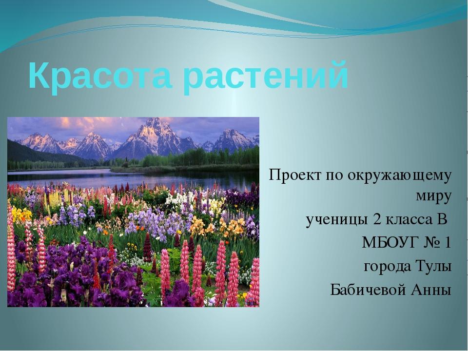 Красота растений Проект по окружающему миру ученицы 2 класса В МБОУГ № 1 горо...