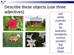 Describe these objects (use three adjectives) red white summer old fat beauti