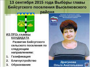 13 сентября 2015 года Выборы главы Бейсугского поселения Выселковского района