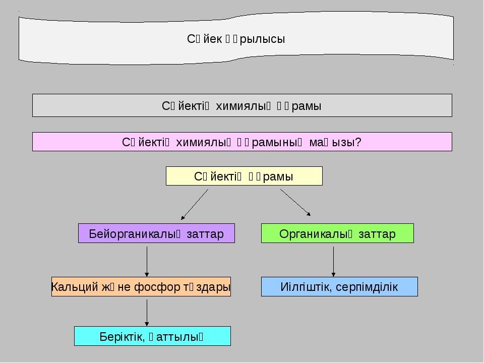 Сүйек құрылысы Сүйектің химиялық құрамы Сүйектің химиялық құрамының маңызы? С...