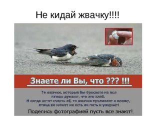 Не кидай жвачку!!!!