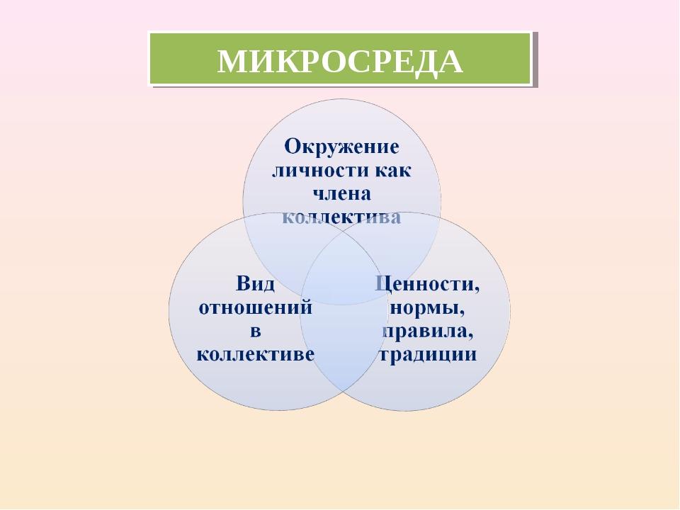 МИКРОСРЕДА