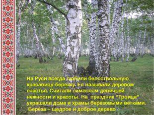 На Руси всегда любили белоствольную красавицу-березку. Ее называли деревом с