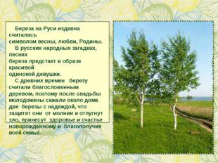 Береза на Руси издавна считалась символом весны, любви, Родины. В русских на