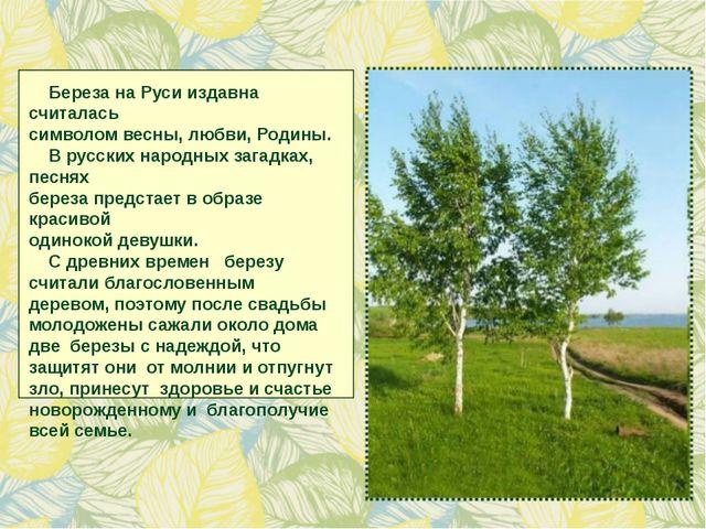 Береза на Руси издавна считалась символом весны, любви, Родины. В русских на...