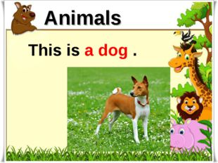This is a dog . Animals