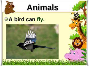 Animals A bird can fly.