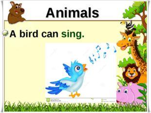 Animals A bird can sing.