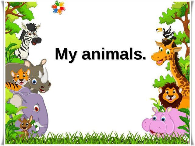 My animals.