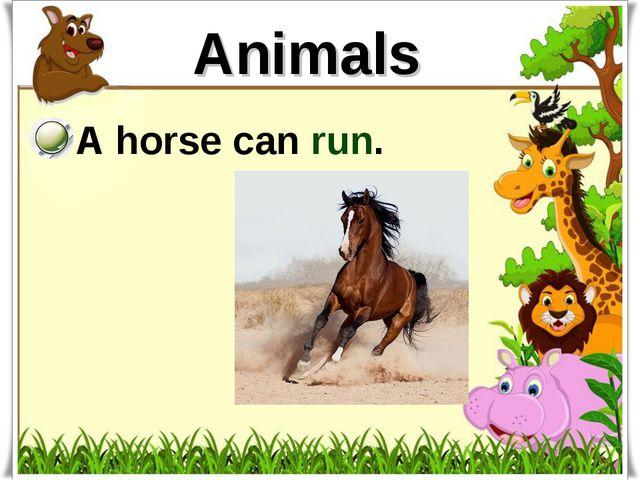 Animals A horse can run.