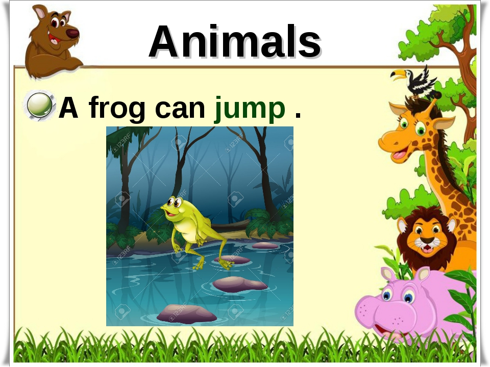 Animals A frog can jump .