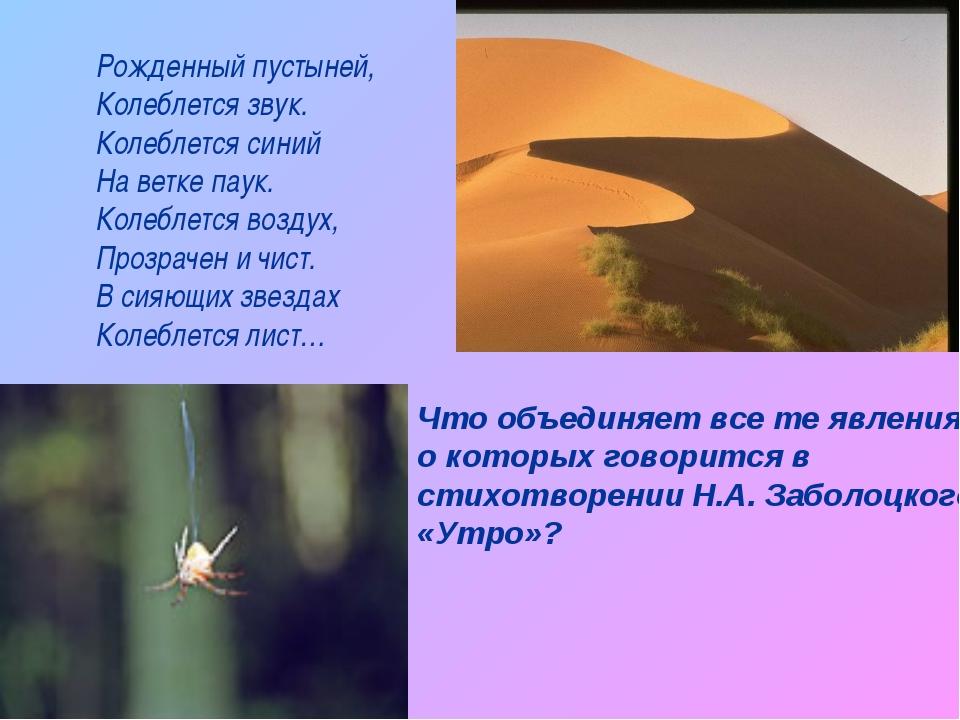 Рожденный пустыней, Колеблется звук. Колеблется синий На ветке паук. Колеблет...