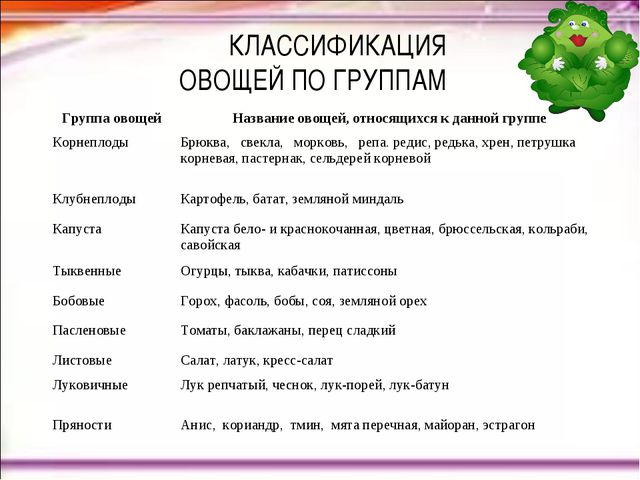 КЛАССИФИКАЦИЯ ОВОЩЕЙ ПО ГРУППАМ Группа овощейНазвание овощей, относящихся к...