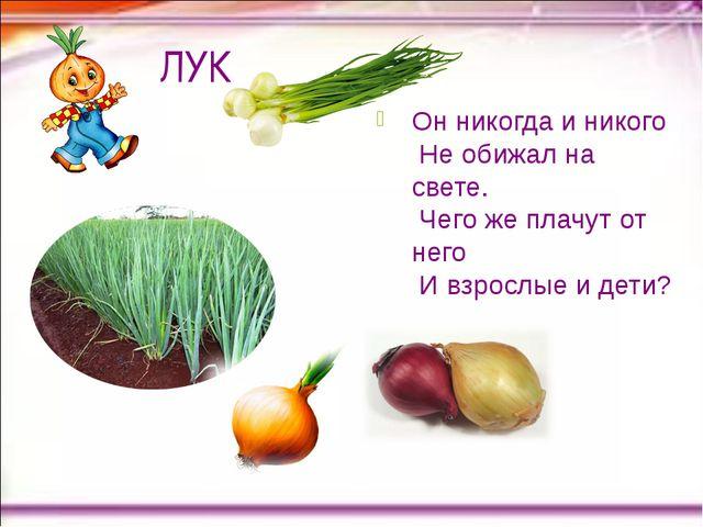 Конспект-урока обслуживающий труд овощи